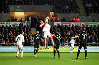 Barclays Premier League, Swansea City (White) V Norwich City (black) Liberty Stadium, Swansea, 08/12/12<br /> Pictured: This goal would have levelled the scores at three all but it was disallowed by referee Howard Webb<br /> Picture by: Ben Wyeth / Athena <br /> Athena Picture Agency<br /> info@athena-pictures.com