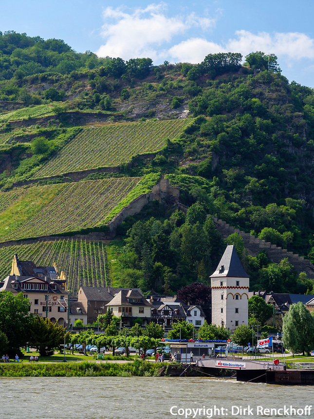 Bacharach am Rhein, Rheinland-Pfalz, Deutschland, Europa<br /> Bacharach at river Rhine, Rhineland-Palatinate, Germany, Europe