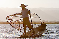 Myanmar, Burma.  Fisherman rowing with one leg, in the style common to Inle Lake, Shan State.  Looking for a place to set his fish net in late afternoon.