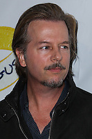 """WEST HOLLYWOOD, CA - NOVEMBER 13: David Spade at the """"Stand Up For Gus"""" Benefit held at Bootsy Bellows on November 13, 2013 in West Hollywood, California. (Photo by Xavier Collin/Celebrity Monitor)"""