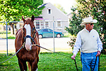 Hall of Fame trainer D. Wayne Lukas grazes Will Take Charge at Churchill Downs in Louisville, KY on May 01, 2013. (Alex Evers/ Eclipse Sportswire)