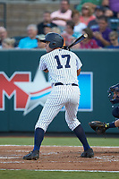 Max Burt (17) of the Pulaski Yankees at bat against the Princeton Rays at Calfee Park on July 14, 2018 in Pulaski, Virginia. The Rays defeated the Yankees 13-1.  (Brian Westerholt/Four Seam Images)