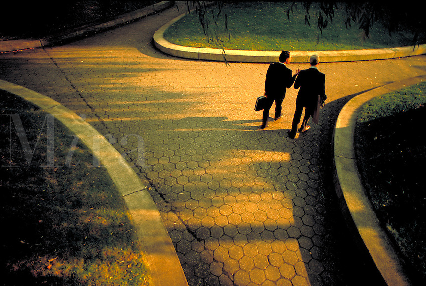 Male executives walking through park, talking, communication, aerial, rear view.