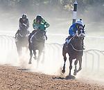 2016 Montpelier Hunt Races