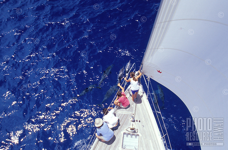 Family watching Spinner Dolphins cavort at bow of sailboat