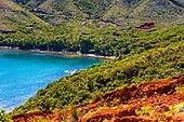 Baie de tamanou, Thio