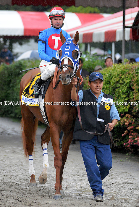 29 August 2009: Summer Bird and jockey Kent Desormeaux come onto the track before winning The Travers Stakes at Saratoga Race Track in Saratoga Springs, New York