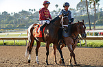 DEL MAR, CA  AUGUST 1: #7 Shedaresthedevil, ridden by Florent Geroux,, in the post parade before the Clement L. Hirsch Stakes (Grade 1) Breeders Cup Win and You're In Distaff Division on August 1, 2021 at Del Mar Thoroughbred Club in Del Mar, CA.