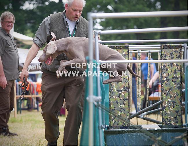 De Steeg, 130615<br /> GROENE DAGEN, HET OUTDOOR EVENEMENT VOOR JACHT, BOS & BOOM<br /> Foto: Een hond probeert een parcours voor jachthonden maar snapt het nog niet helemaal, het verlaat het voortijdig via de zijkant.<br /> Foto: Sjef Prins - APA Foto