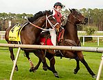 TAMPA, FL - February 10: An agile outrider catches a loose Cheyenne's Colonel, #4, before going through the rail after the fall in the Tampa Bay Stakes (Grade II) at Tampa Bay Downs on February 10, 2018 in Tampa, FL. (Photo by Carson Dennis/Eclipse Sportswire/Getty Images.)