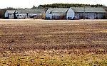 SIMSBURY CT. - 09 January 2020-010921SV05-Huge tobacco sheds on Firetown Road are where Martin Luther King Jr. worked as a teenager in the 1940s in Simsbury.<br /> Steven Valenti Republican-American