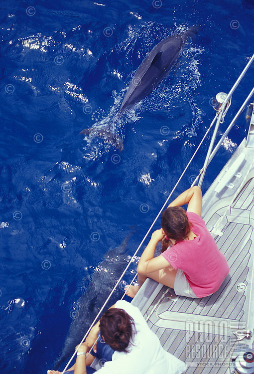 Mother and daughter watching Spinner Dolphins cavort at bow of sailboat