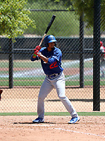 Luis Diaz - Los Angeles Dodgers 2019 extended spring training (Bill Mitchell)
