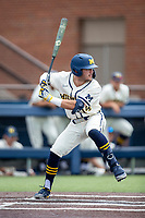 Michigan Wolverines third baseman Christian Molfetta (14) at bat against the Maryland Terrapins on May 23, 2021 in NCAA baseball action at Ray Fisher Stadium in Ann Arbor, Michigan. Maryland beat the Wolverines 7-3. (Andrew Woolley/Four Seam Images)