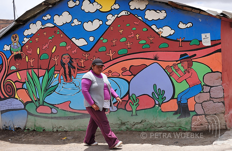 CHILE<br /> Colourful wall paintings in Putre