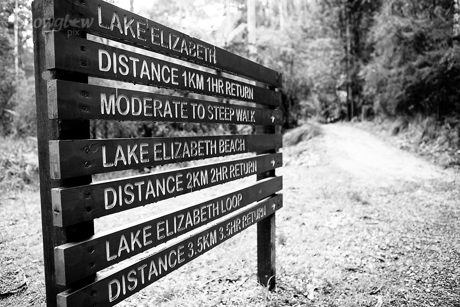 Image Ref: CA576<br /> Location: Lake Elizabeth, Forrest<br /> Date of Shot: 20.10.18