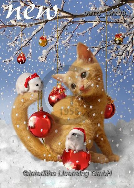 CHIARA,CHRISTMAS ANIMALS, WEIHNACHTEN TIERE, NAVIDAD ANIMALES, paintings+++++,USLGCHI08,#XA# ,funny ,funny