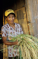 PHILIPPINES, Negros, NGO BIND promotes organic rice farming after SRI method, system of rice intensification, woman farmer Emilia Dalisay in village Sitio Sutay / PHILIPPINEN Negros, NGO BIND foerdert den oekologischen  Reisanbau nach dem SRI System, System zur Reisintensivierung, <br />