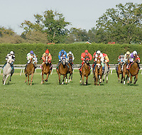 Sand Witchh winning The Rosebrook Arabian Distaff Turf at Delaware Park on 9/21/09