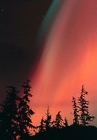 Intense red northern lights flare over the Tongass National Forest