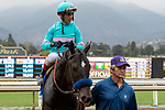 """ARCADIA, CA  SEPTEMBER 27:#3 Eight Rings, ridden by John Velazquez, returns to the connections after winning the American Pharoah Stakes (Grade 1) """"Win and You're In Breeders' Cup Juvenile Division"""" on September 27, 2019 at Santa Anita Park in Arcadia, CA."""