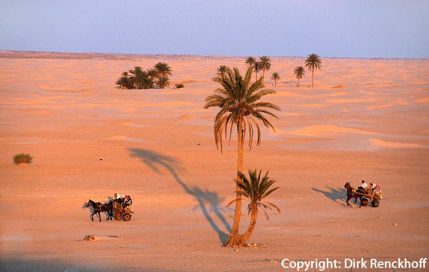 Wüste bei Douz, Tunesien