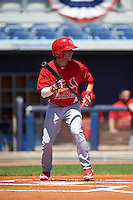 Palm Beach Cardinals shortstop Mikey Reynolds (4) squares to bunt during a game against the Charlotte Stone Crabs on April 10, 2016 at Charlotte Sports Park in Port Charlotte, Florida.  Palm Beach defeated Charlotte 4-1.  (Mike Janes/Four Seam Images)