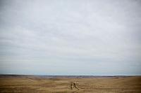 Tire tracks cut through a ranch field south of Ulm, Montana, USA.