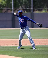 Ed Howard - Chicago Cubs 2021 spring training (Bill Mitchell)