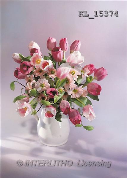 Interlitho, Erica, COMMUNION, photos, tulips(KL15374,#U#) Kommunion, comunión