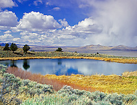 M00195M.tif Smal pond on Hart Mountain with storm clouds. Oregon