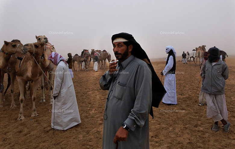 Bedouins from seven countries gather for the Camel Beauty contest.  Camels, or dromedaries, have been carrying people and supplies across desert areas for thousands of years. They have also provided their owners with meat to eat, milk to drink, and hair to weave into cloth.