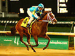 Debt Ceiling and Eric Camacho win the 112th running of The Bashford Manor Grade 3 $100,000 at Churchill Downs.  June 29, 2013.