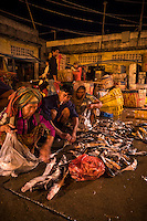 Early morning Whole sale fish market on the Banks of the Mekong River, outskirts of Phnom Penh, Cambodia