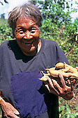 Koatinemo village, Brazil. Smiling elderly Assurini Indian woman holding sweet potatoes.