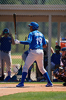 Toronto Blue Jays Jesus Severino (29) during a Minor League Spring Training game against the Detroit Tigers on March 22, 2019 at the TigerTown Complex in Lakeland, Florida.  (Mike Janes/Four Seam Images)