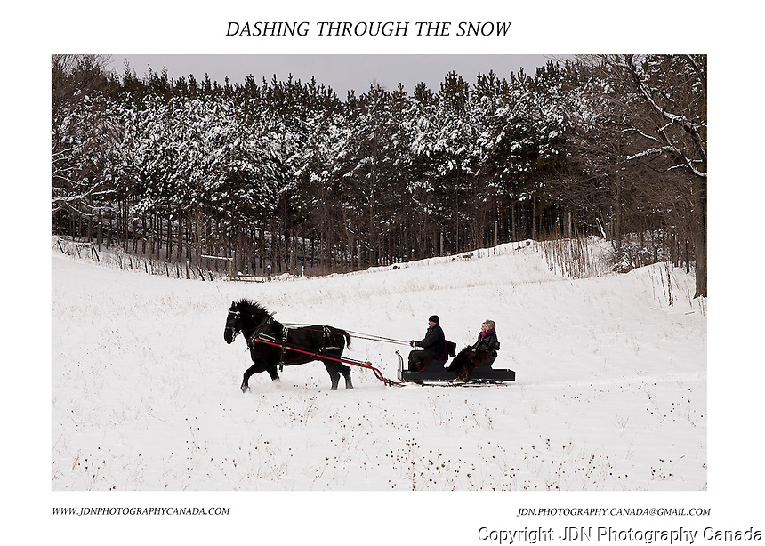 Winter Scenes from Horseshoe Valley area