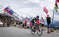 Max Kanter (DEU/DSM) up the Passo San Bernardino (2065m/SUI)<br /> <br /> 104th Giro d'Italia 2021 (2.UWT)<br /> Stage 20 (through Switzerland) from Verbania to Valle Spluga-Alpe Motta (164km)<br /> <br /> ©kramon
