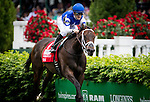 LOUISVILLE, KY - MAY 07: Tepin #1, ridden by Julien Leparoux, wins the Churchil Distaff Turf Mile at Churchill Downs on May 07, 2016 in Louisville, Kentucky.(Photo by Alex Evers/Eclipse Sportswire/Getty Images)
