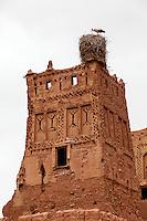 Morocco.  Stork on Nest, Tamdaght Ksar, an Historic Glaoui Settlement.