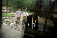 Visitors reflected in a window walk up to get a view of an elephant in a small concrete and metal enclosure at the zoo in Nanjing, China.