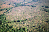 Amazon, Brazil. Aerial view of rainforest land which has been felled cleared and burnt for agriculture.