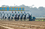 DEL MAR, CA  AUGUST 1:  The start of the Clement L. Hirsch Stakes (Grade 1) Breeders Cup Win and You're In Distaff Division on August 1, 2021 at Del Mar Thoroughbred Club in Del Mar, CA.