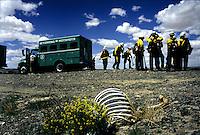 Archive: Wyoming Hotshots