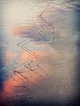 11.30.13 - Sky, Water, Earth...