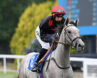 Have to Have ridden by Josephine Gordon goes down to the start of  The Crouch's Down Maiden Auction Fillies Stakes during Horse Racing at Salisbury Racecourse on 13th August 2020