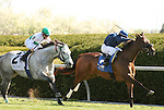 10 April 2010.   Wasted Tears and Rajiv Maragh win the 22nd running of The Jenny Wiley (GRII).