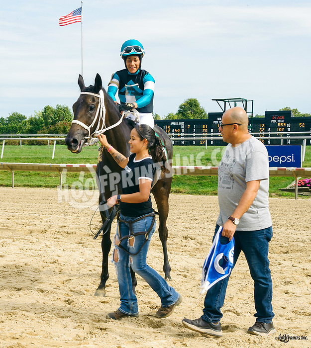 Uncle Mo's Affair winning at Delaware Park on 9/16/19
