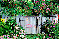 Welcome garden rose garden gate.