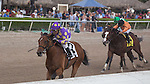 January 02, 2016: Awesome Banner with Jose Caraballo up wins the Hutcheson Stakes(G3) for 3 year olds at Gulfstream Park. Gulfstream Park, Hallandale Beach (FL). Arron Haggart/ESW/CSM